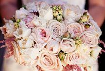 Wedding / by MeganKudlik