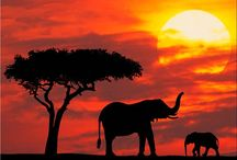 Travelling - Kenya / Beautiful pictures of Kenya