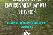 #EnvironmentDay: what was cropped from the picture? / Join our World #EnvironmentDay celebration online on Facebook and Pinterest! Stay tuned all week long with facebook.com/florverdeorg and pinterest.com/florverdeorg. How to join? just guess what will be cropped from 3 pictures to be uploaded all week long!