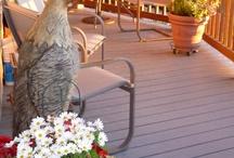 Front deck / by MikeNjen Scott