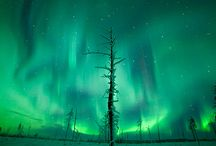 Snowy landscape and Aurora Borealis / Live a unique experience in the heart of the extreme north, in the land of Aurora Borealis, in e place of surprising beauty and authenticity.