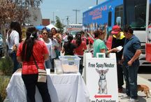 Free Spay and Neuter Events