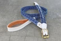 Dog Accessories /  Dog collar and leashes