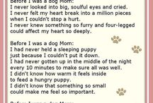 Doggy poems