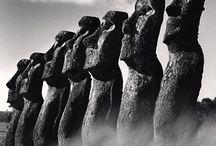 moaii•moaii