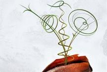 Comrel's Graphics Designs / Works created by Comrel Digital Agency