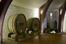 The Wine Cellar / Approximately 1,750 square meters where grapes, in total tranquility, become wine. The temperature and lighting of all the winery rooms have been studied with great attention, creating the ideal environment for each processing stage.