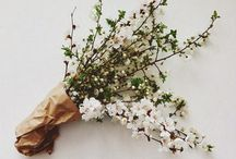 Blommor, inspo