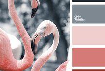 style & colours