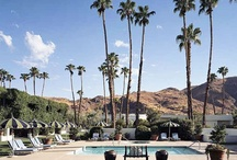 Cali Road Trip / Where to go and what to do in California...Palm Springs, LA, PCH, Big Sur, San Francisco... / by Alison Lawler-Dean