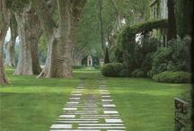 Gardening: French Provencal Garden Ideas