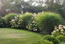 Haraszti kert