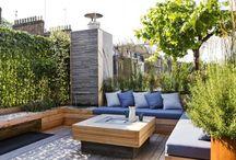 Сад на крыше / Зеленые крыши