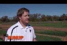 Videos | Wheat & Canola Updates