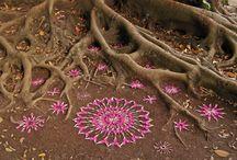 Mandala in Natura