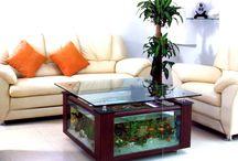 aquarium Platz