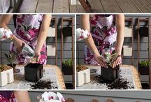 jardinería !!!!
