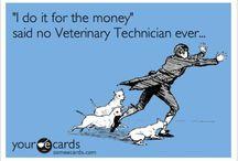 Veterinary Technician Stuff