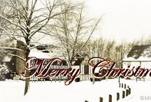 Christmas / Pins for the Christmas season! / by Carolyn Nicander Mohr