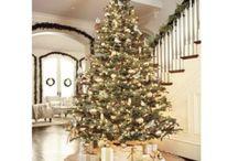 Christmas / by Whitney Guzzo
