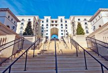 Éilan Hotel Resort & Spa - San Antonio, TX / With the style of an intimate boutique hotel combined with the splendor of a world-class luxury resort, Eilan Hotel Resort & Spa is the newest upscale hotel in San Antonio.