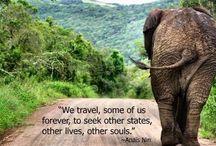 Traveler Me