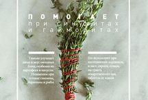 magazine layout and ideas