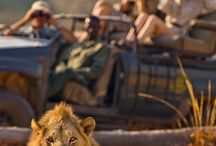 Africa Travel Inspiration