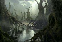 Swamps & Marshlands