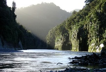 NZ Trips