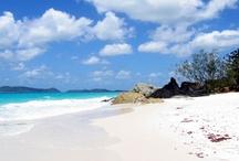 Australian Beaches / Beautiful Australian beaches.  / by Lisa Dworkin