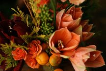 flowers, plants and garden / by Amanda Warner
