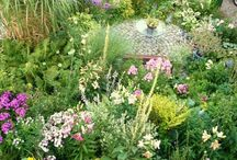 Garden inspiration / Share our passion for outdoor design and gardening aesthetics!