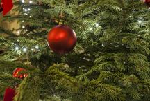 A Future Inns Christmas