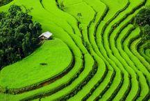 WORLD - VIETNAM