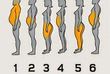 Type d'obesite