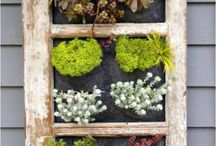 Recycling Frames