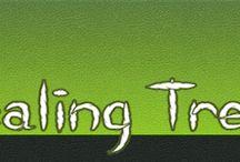Hawaii Healing Tree Alchohol Cannabis Tincture Recipe