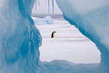 Antarctica Travel Inspiration