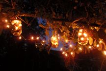 I love being I'n my garden, around my patio, and I'n my tree house / by Shewan Mitchem