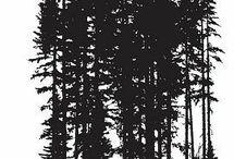 Склон леса