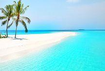 Spiagge tropicali