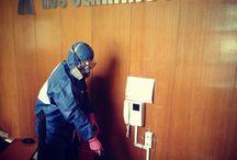Vigilancia y Control de Plagas / Nuestra empresa realiza Vigilancia y Control de Plagas en empresas alimentarias, restaurantes, viviendas, parkings, oficinas, .... Con resultados óptimos y sin riesgo para los usuarios de dichos espacios. Nuestro registro de Sanidad es ROEBS 0944/CV