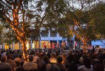 Performing Arts / Music