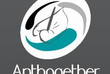 G-Fresh grower Anthogether / Anthogether specializes more and more on the ready for the client concept. Through the successful co-operation of grower, buyer/dealer and client.