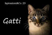 Ispirazioni & Co. - Gatti
