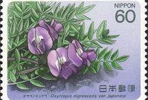 0 botanic