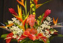 Floral Displays / by Linda Wilds