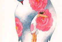 розы снегир