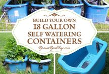 Self watering gallons